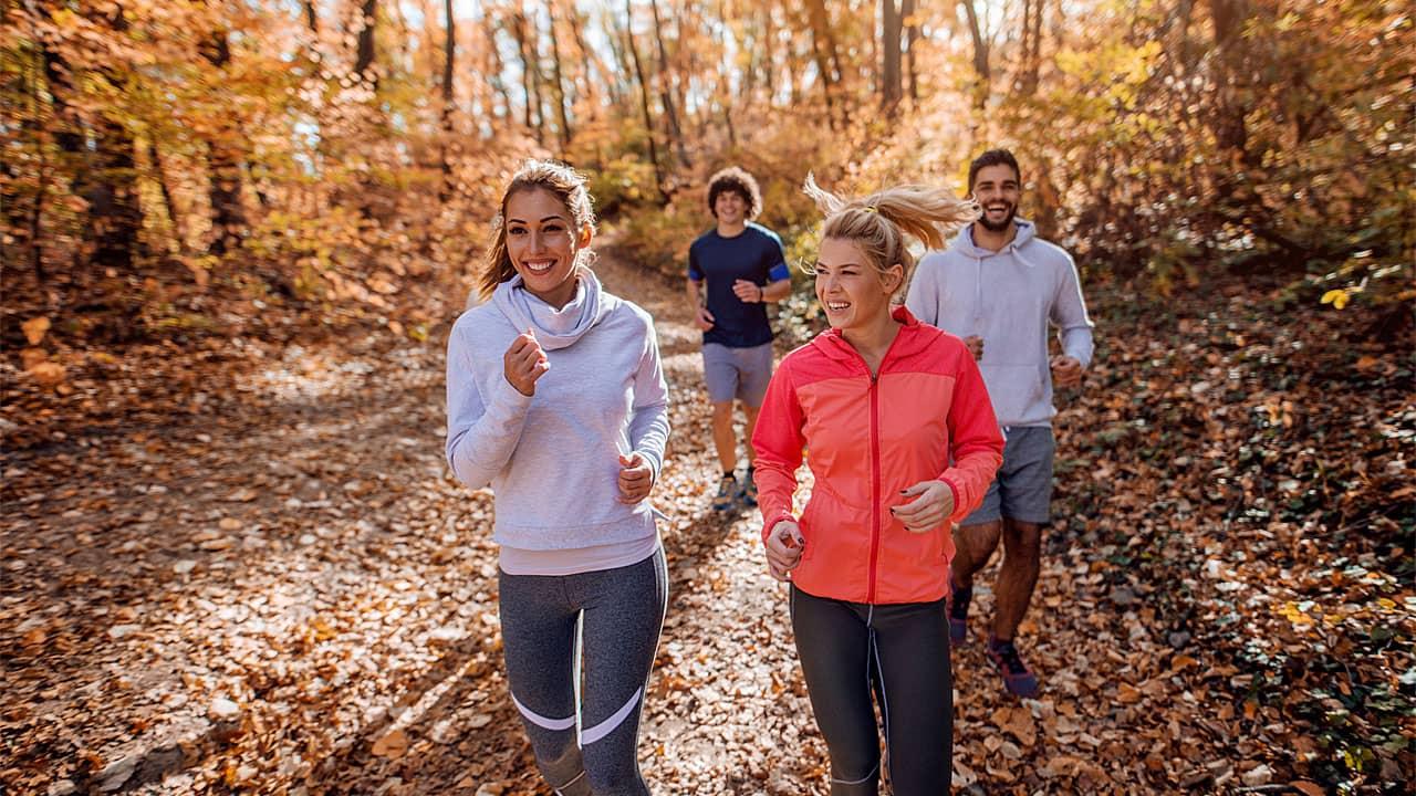 Kleine Gruppe von Frauen und Männern  läuft im herbstlichen Wald.